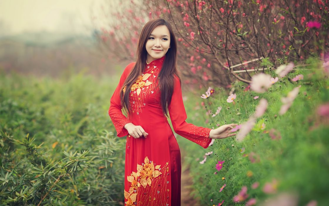 Viet nam ao dai depth of field wallpaper