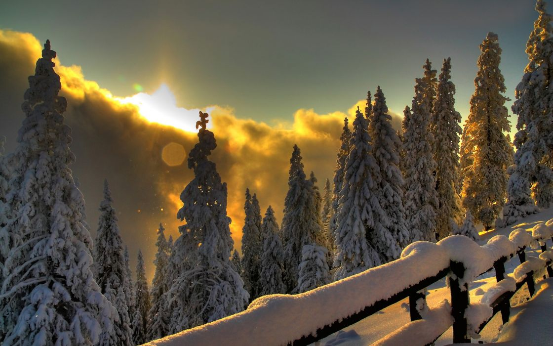 Landscapes nature winter snow wallpaper