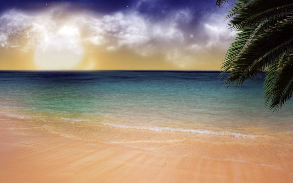 Water ocean clouds beach sand trees sea outdoors palm trees skyscapes wallpaper