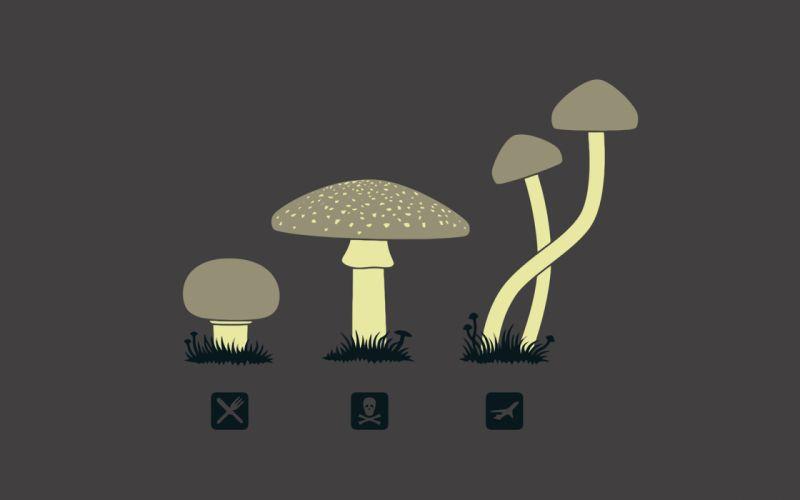 Drugs mushrooms fun art wallpaper