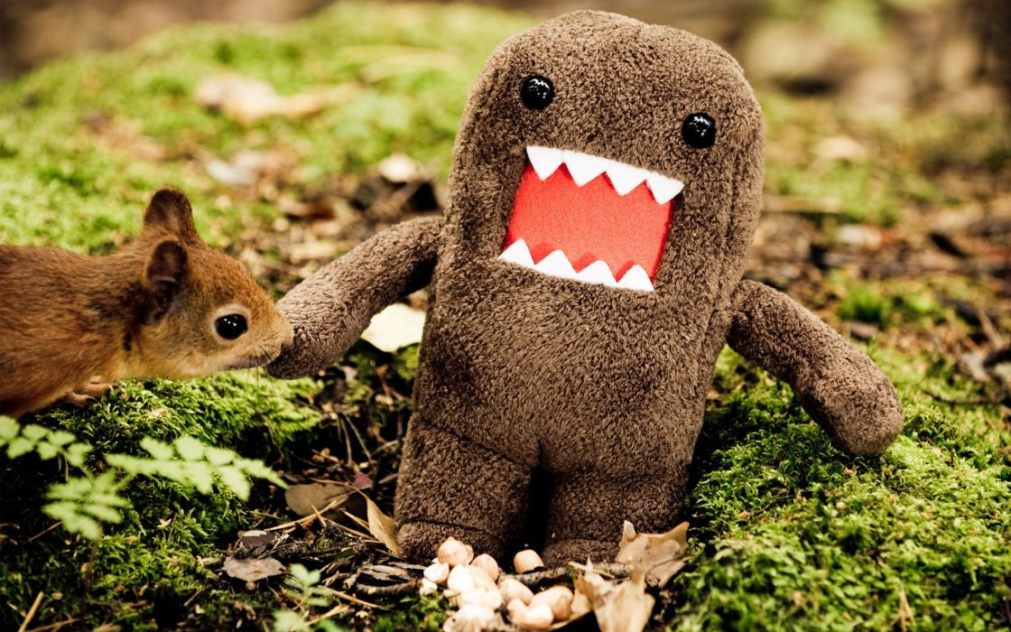Animals domo funny wallpaper
