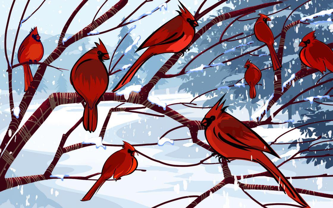 Birds cardinal artwork northern cardinal wallpaper