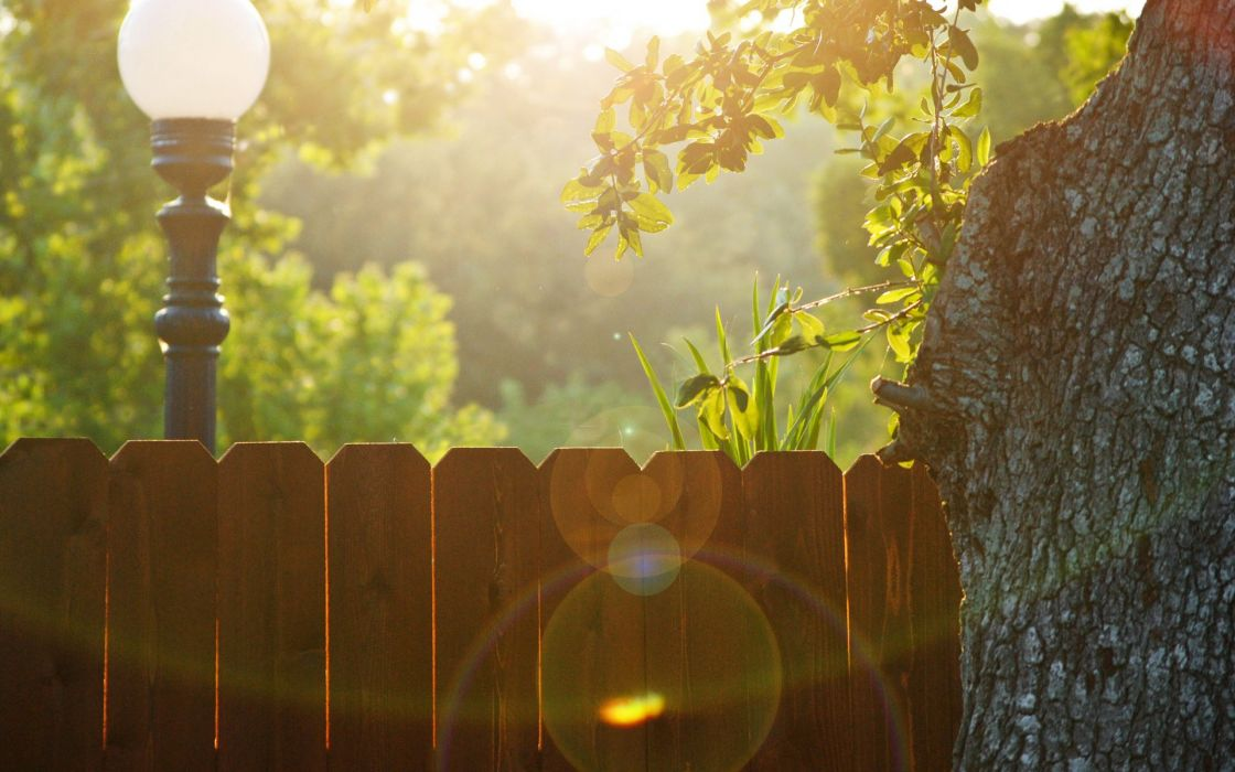 Nature trees fences lanterns sunlight picket fence wallpaper