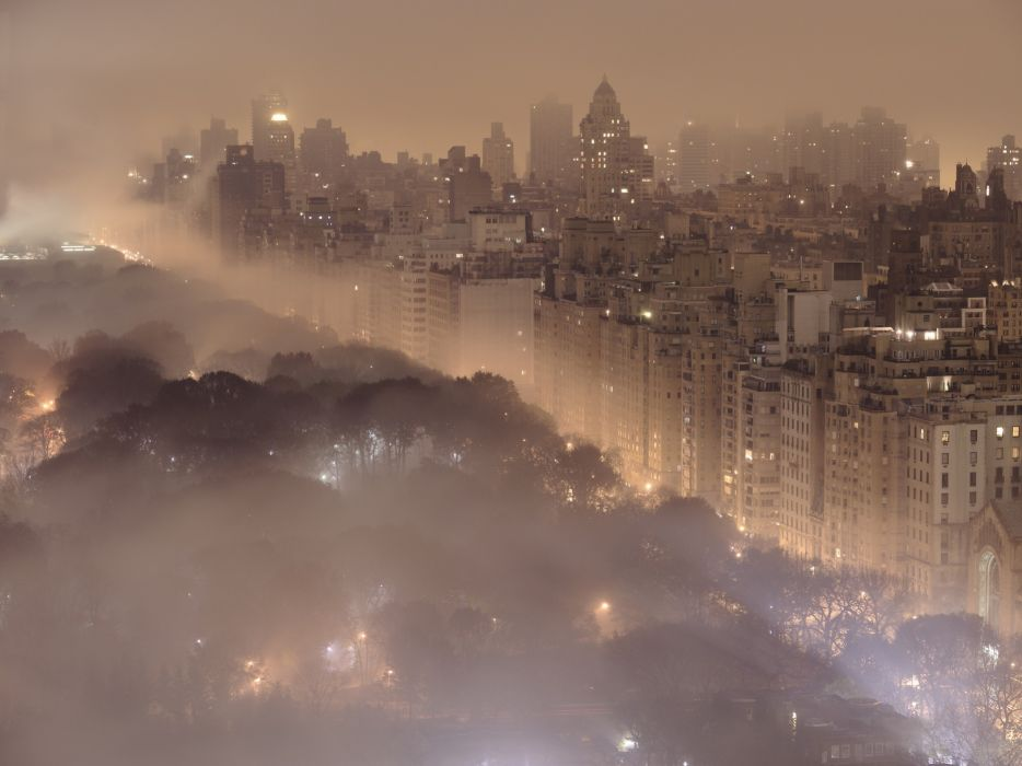Landscapes trees cityscapes forest fog national geographic wallpaper