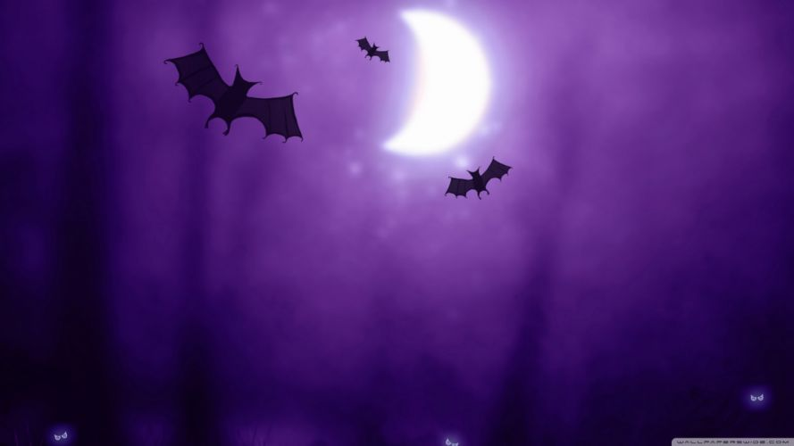 Night halloween moon purple silhouette drawings bats wallpaper