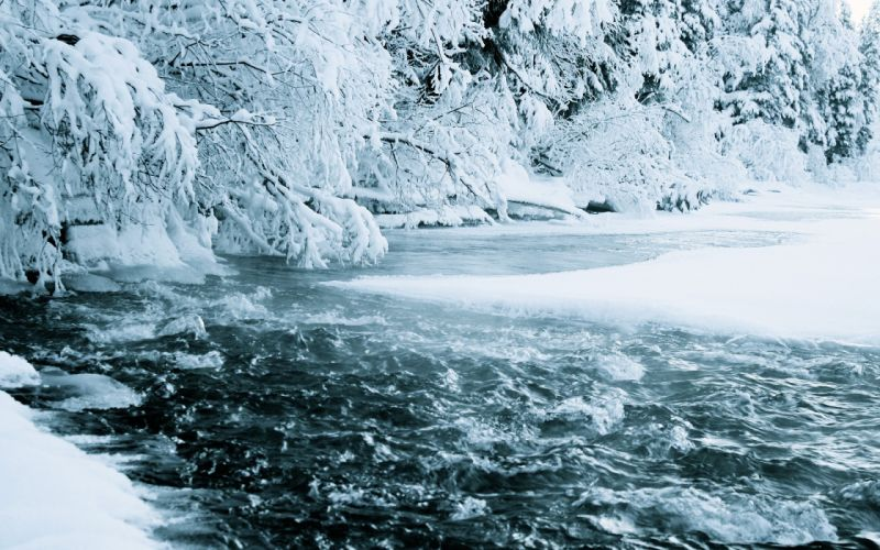 Ice nature snow trees forest streams rivers nordic wallpaper
