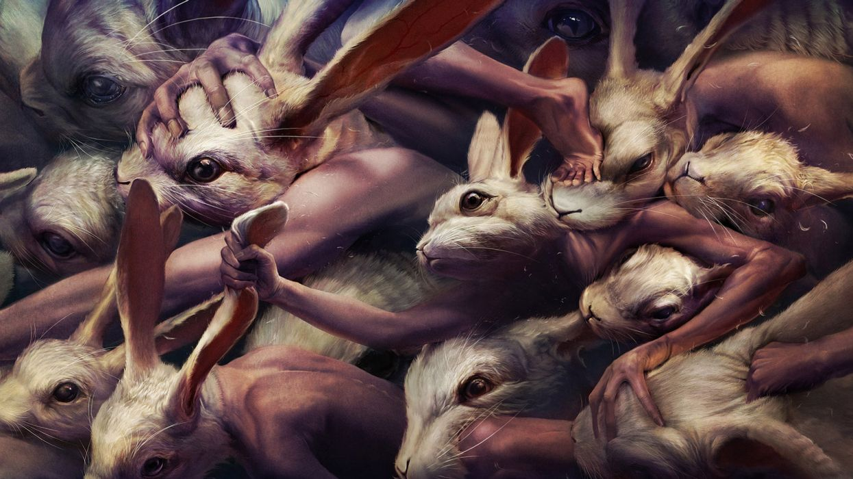 Paintings artistic animals rabbits wallpaper