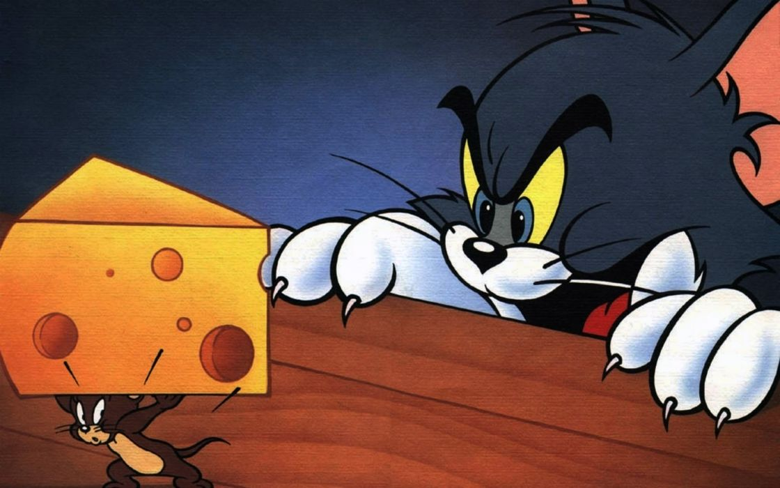 Cheese tom (cartoon) tom and jerry wallpaper