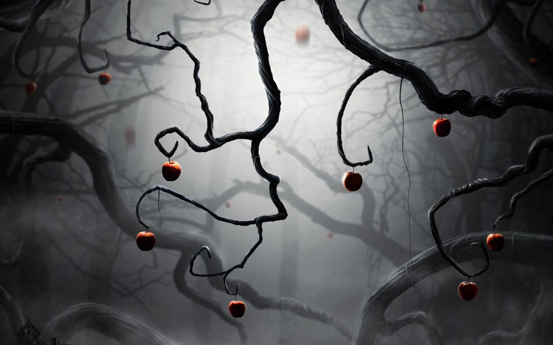Trees fog darkness apples branches wallpaper