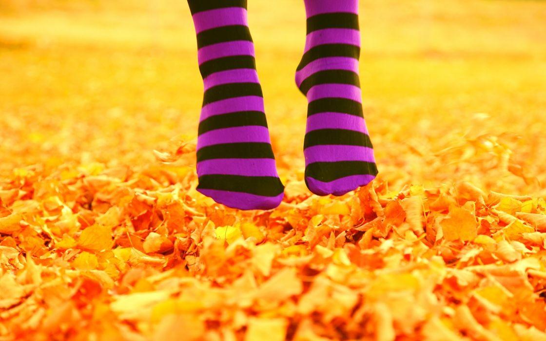 Autumn leaves feet jumping socks fallen leaves wallpaper