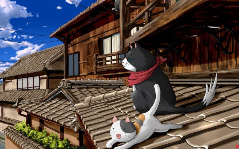 Cats nyan koi wallpaper