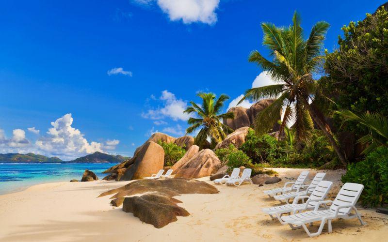 Ocean nature beach shore palms wallpaper