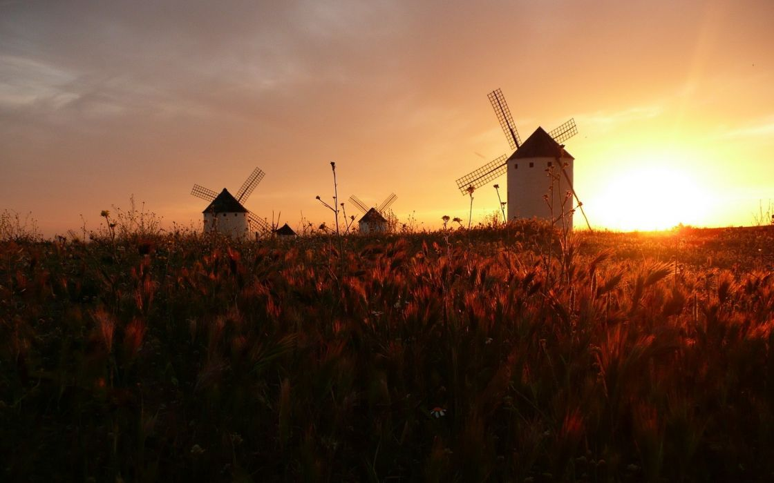 Landscapes windmills wallpaper
