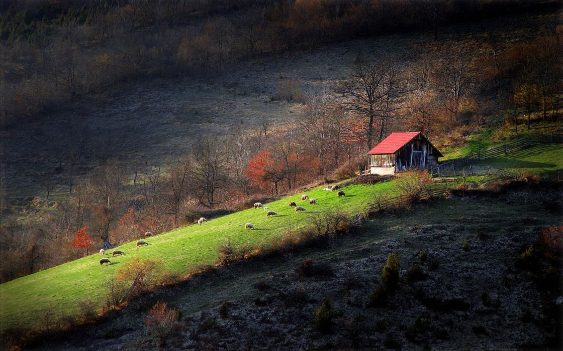 Landscapes serbia wallpaper