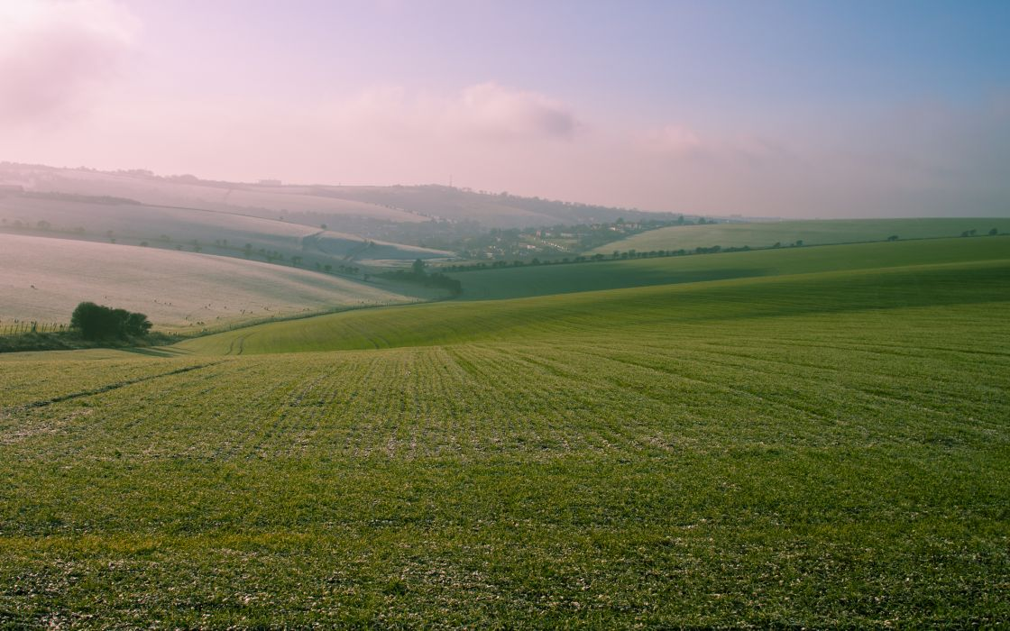 Landscapes fields wallpaper