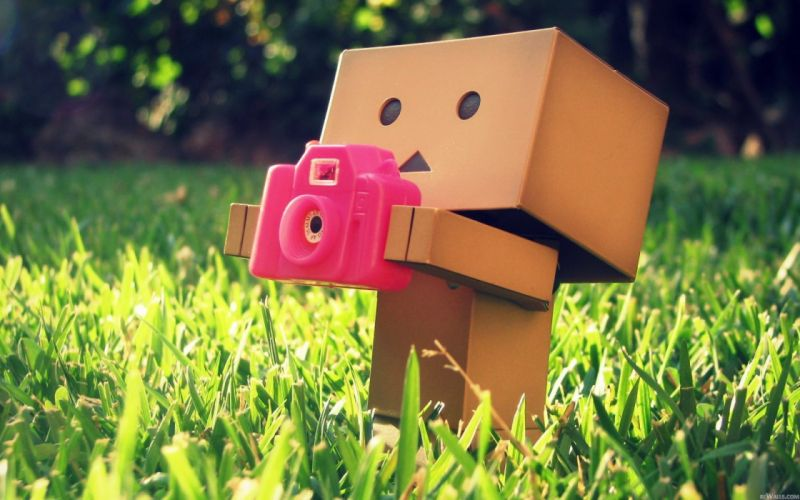 Grass cameras danboard wallpaper