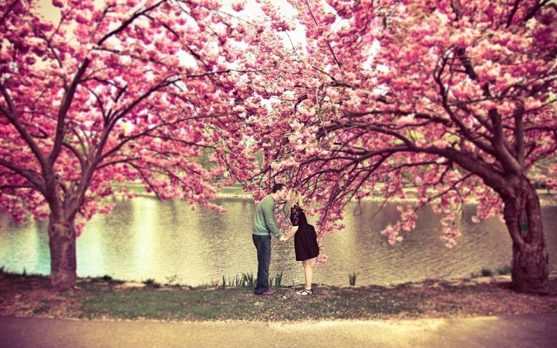 Love trees pink kissing rivers wallpaper