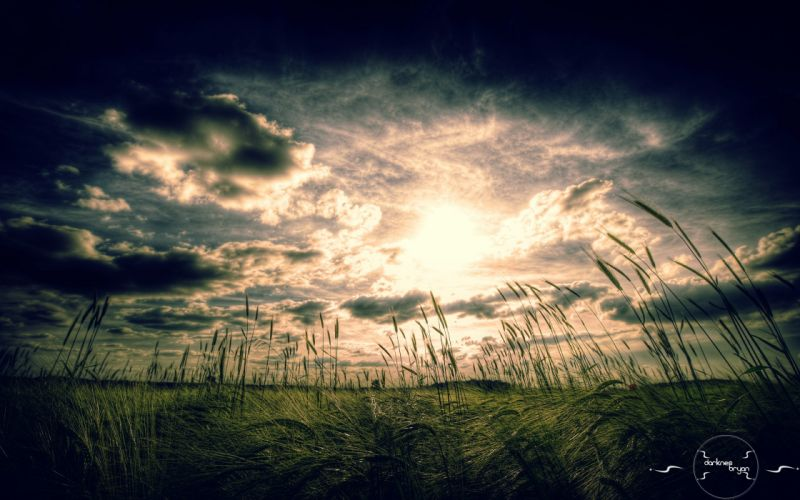 Landscapes nature vintage cornfield cross process wallpaper