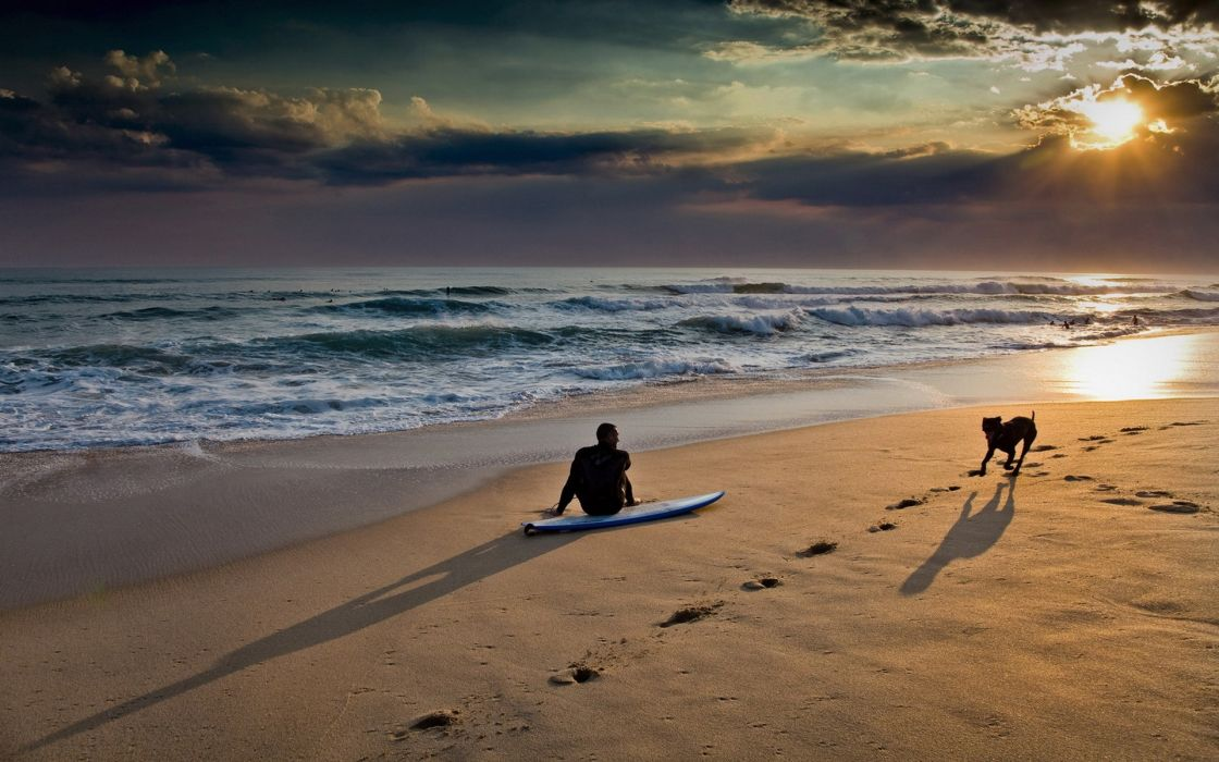 Sunset nature beach sea waves dogs surfing people pets wallpaper