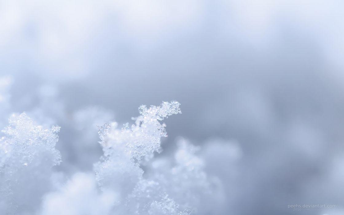 Water ice snow macro wallpaper