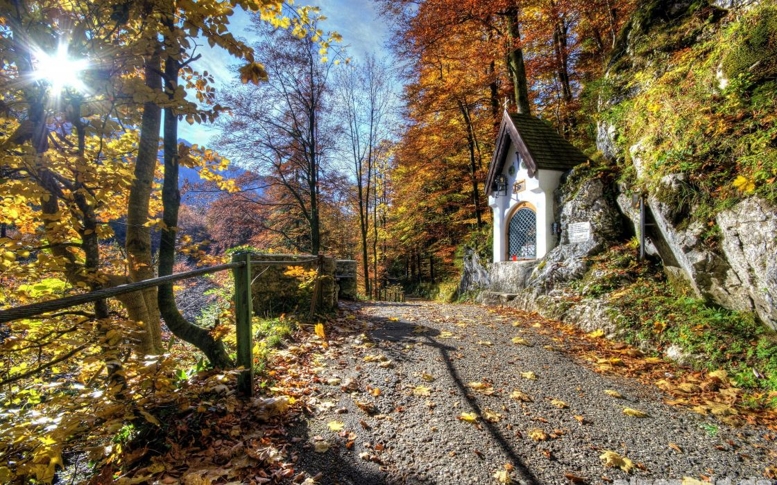 Mountains landscapes trees forest path wallpaper