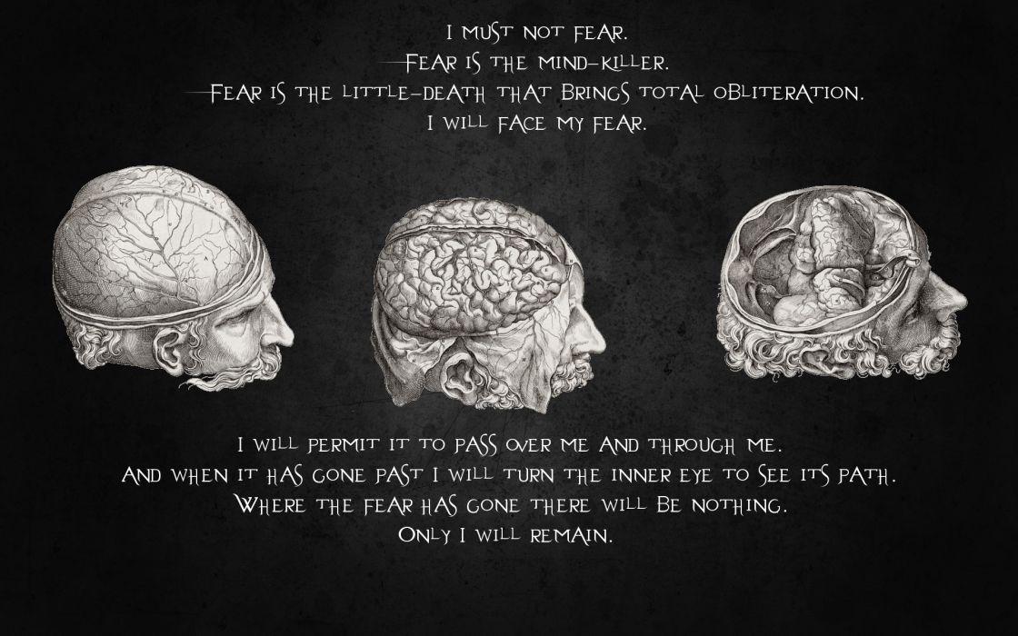 Quotes brain wallpaper