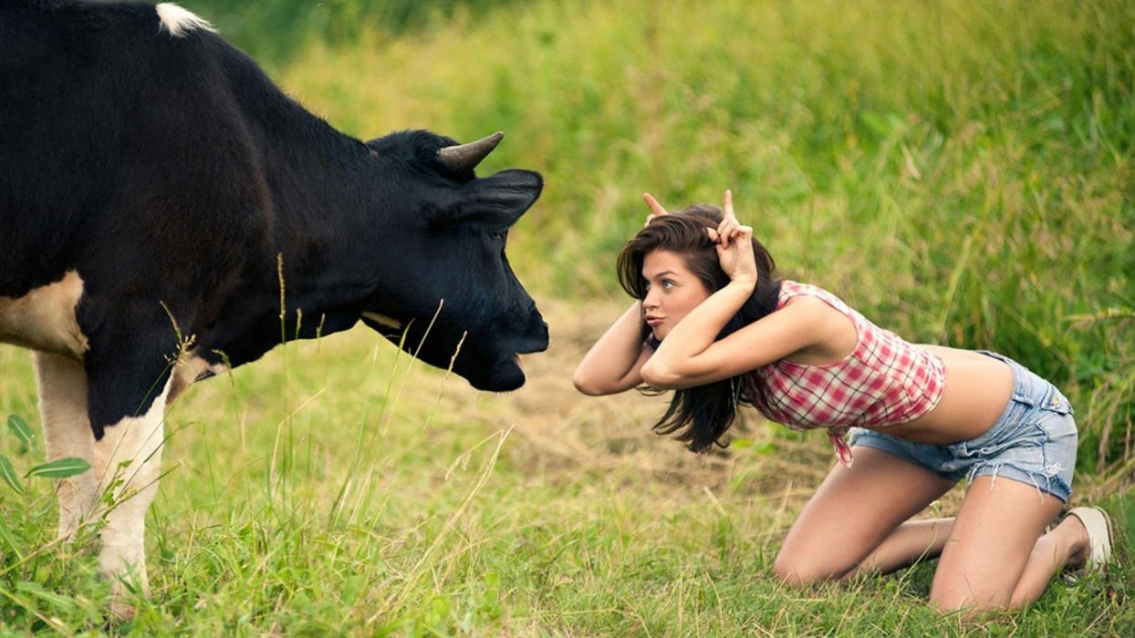 girl-cow wallpaper