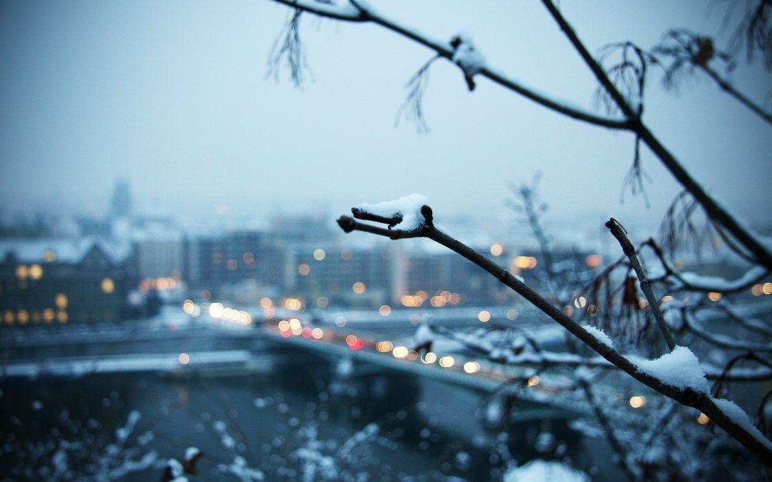 Snow trees cityscapes bridges buildings wallpaper
