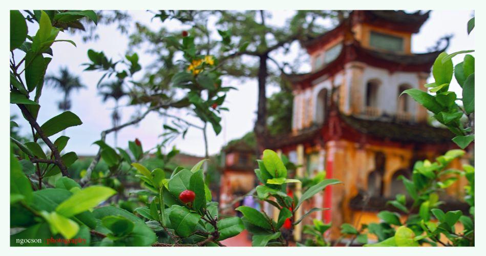 Khanh Hung pagoda - Hai Phong - Viet Nam wallpaper