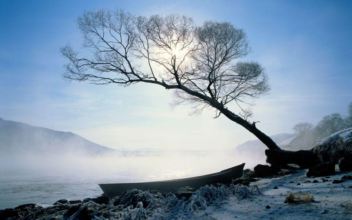 Nature trees ships fog rivers wallpaper