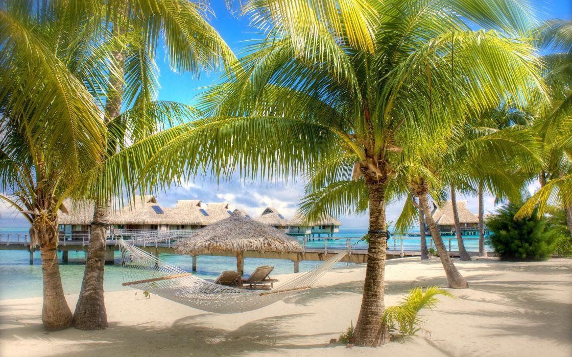 Sand tropical holidays hammock palm trees swimming pools wallpaper