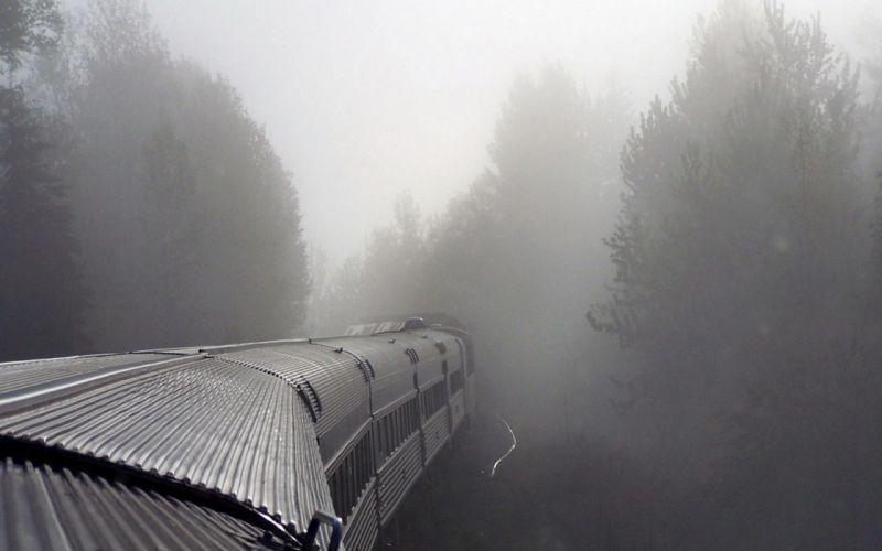 Trees trains fog mist wallpaper