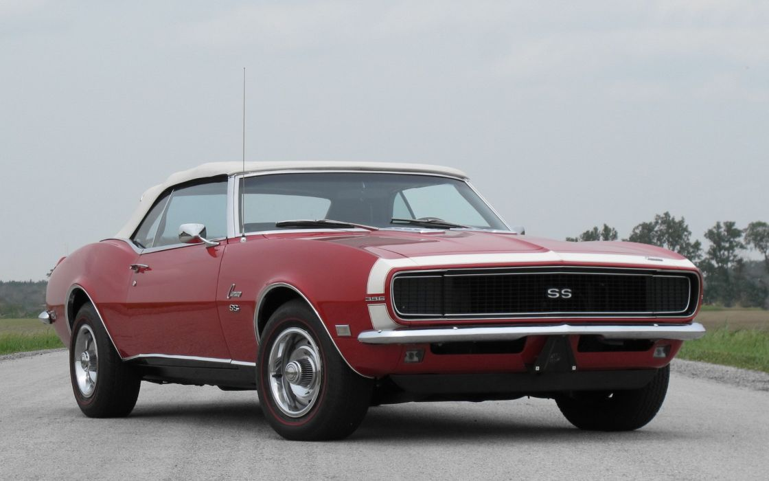 Cats muscle cars vehicles chevrolet camaro ss sport cars wallpaper