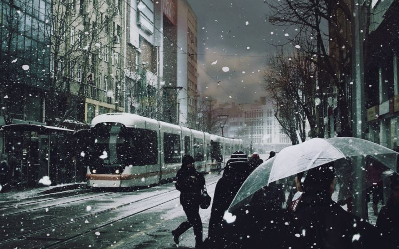 Winter (season) trees cityscapes streets tram roads snowing wallpaper