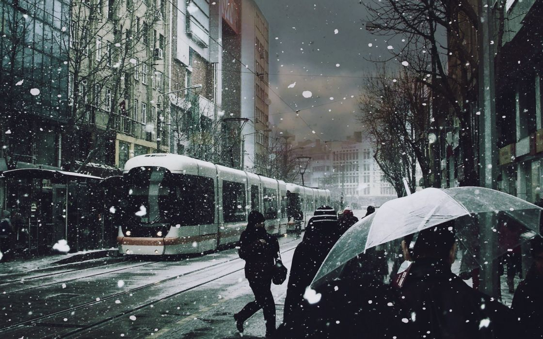 Winter (season) trees cityscapes streets tram roads snowing wallpaper