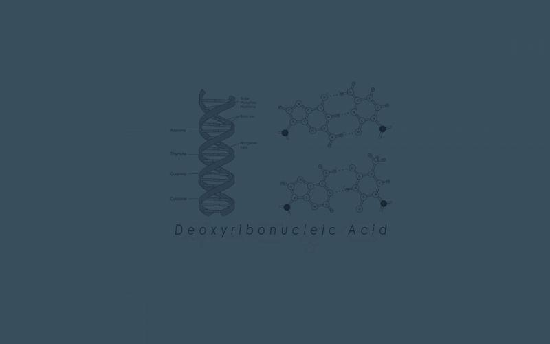 Biology genetics dna wallpaper