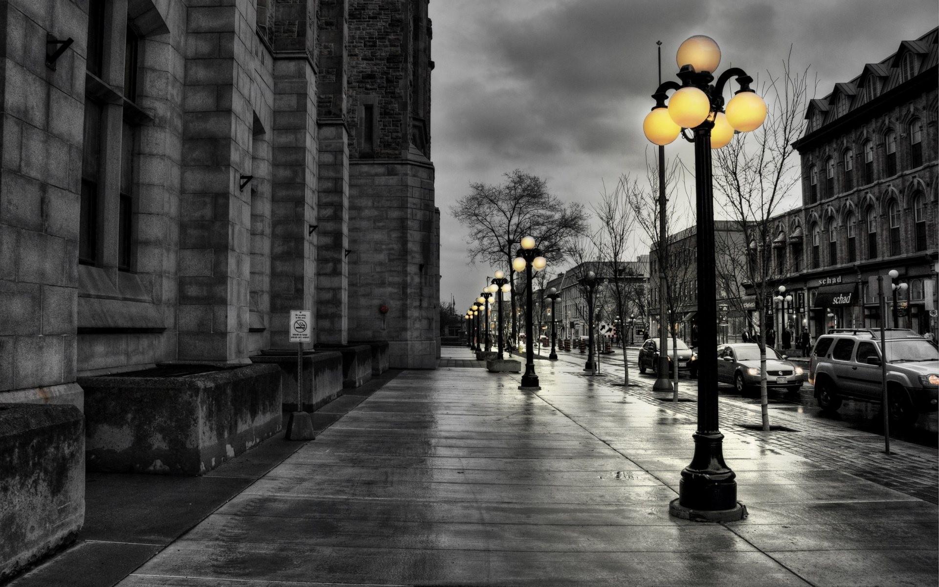 black and white nature yellow walk street lights wallpaper