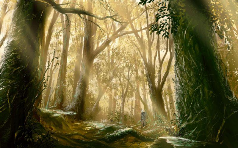 Trees forest mushishi wallpaper