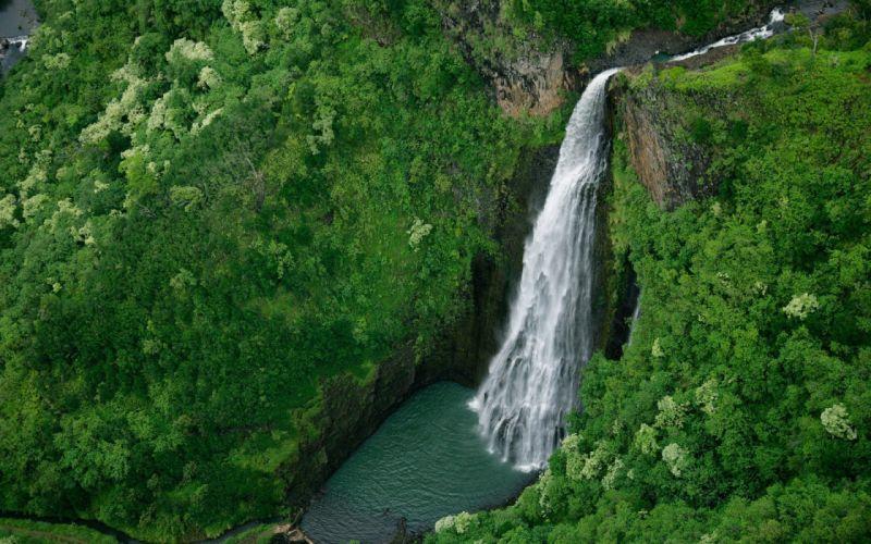 Nature forest waterfalls wallpaper