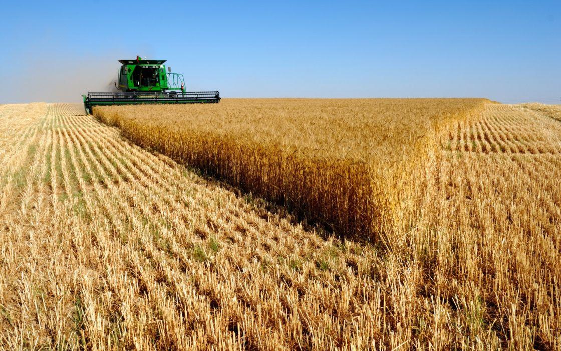 Wheat vehicles combine harvester farming john deere wallpaper