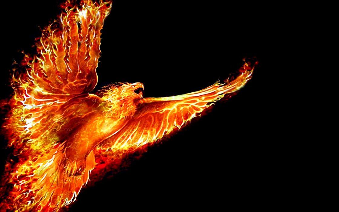 Firebird wallpaper