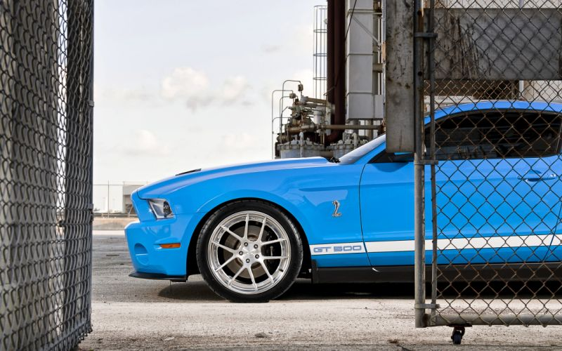 Cars ford mustang shelby mustang blue cars natural lighting ford mustang shelby gt500 wallpaper