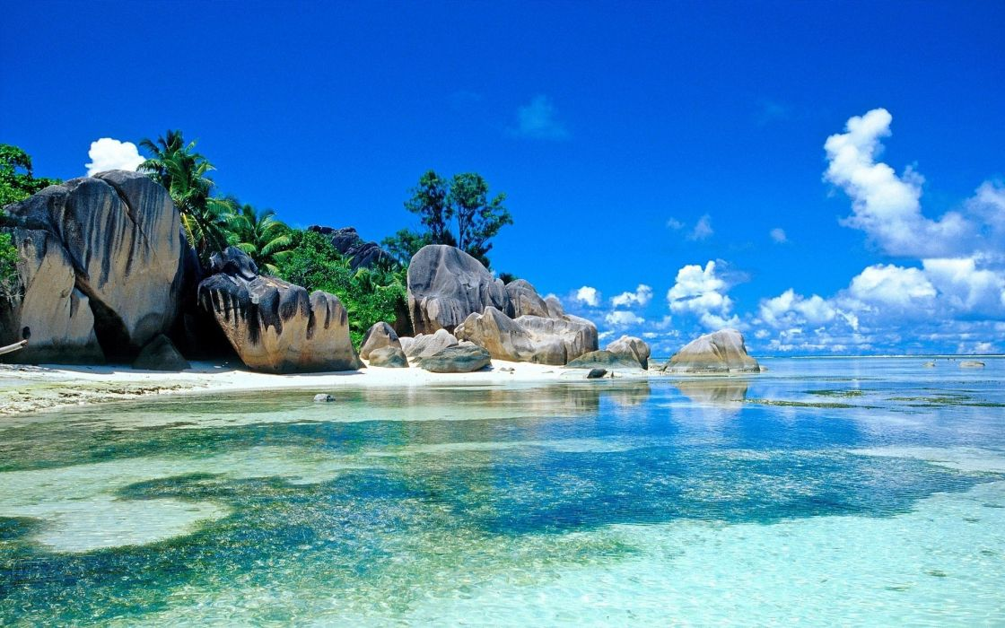 Water clouds beach rocks palm trees wallpaper