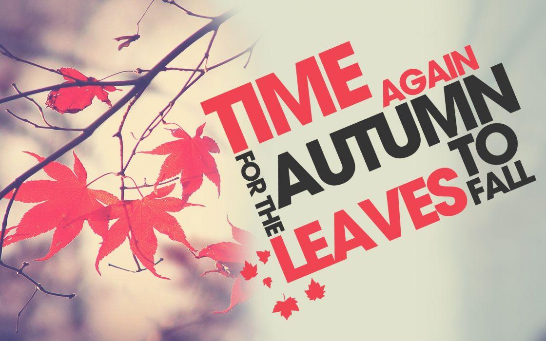 Autumn (season) texts leaves typography grey background wallpaper