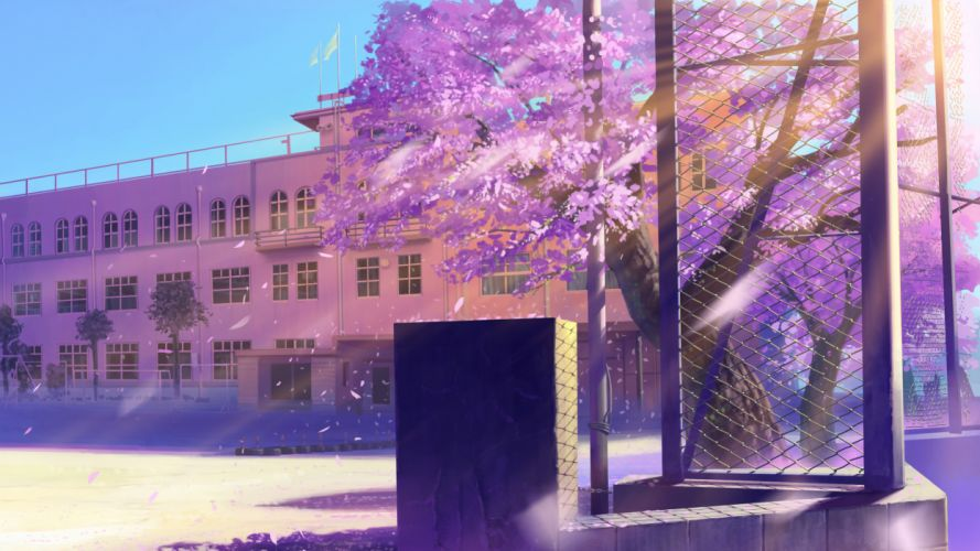 Cherry blossoms school scenic artwork wallpaper