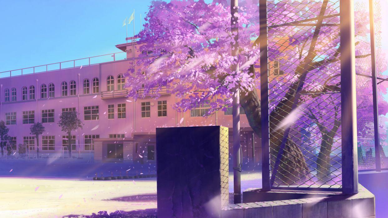 Cherry blossoms school scenic artwork wallpaper