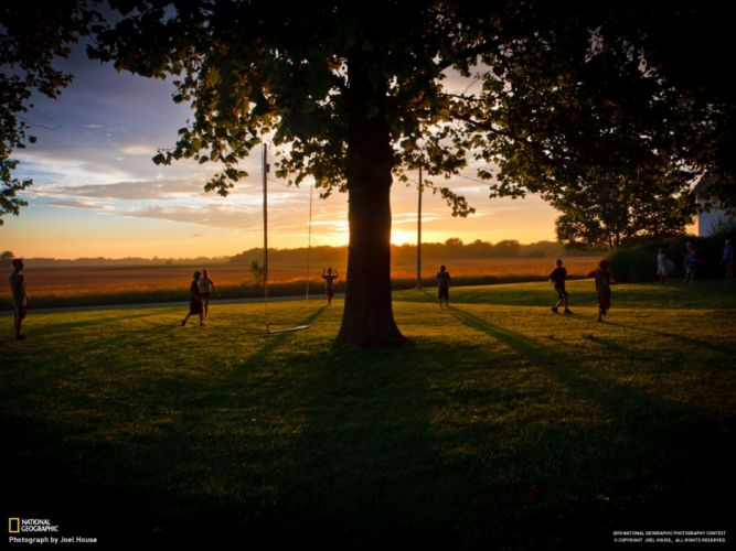 Landscapes nature trees national geographic swing playing park wallpaper