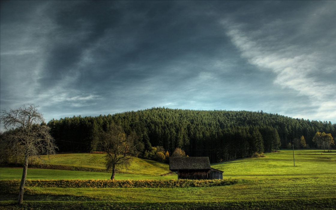 Nature trees houses plains skyscapes wallpaper