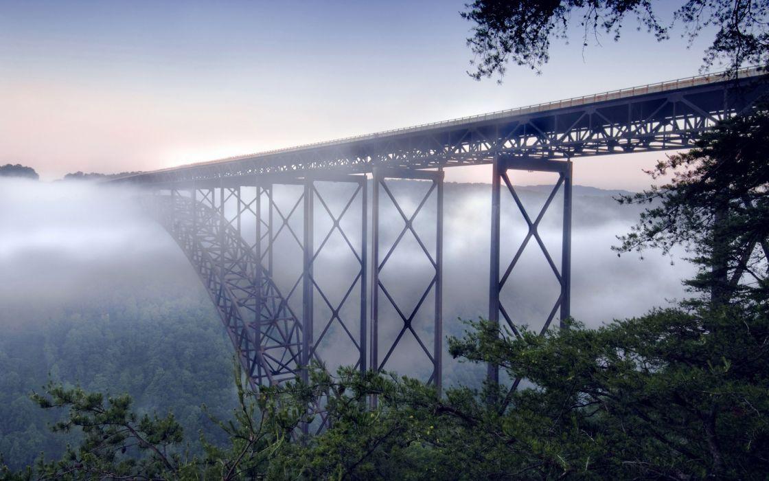 Nature forest fog bridges wallpaper