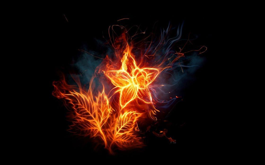 Flames flowers fire blaze photomanipulations black background fire flower wallpaper